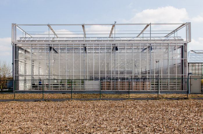 MODULO architects - CROPDESIGN nv Nevele - uitbreiding serrecomplex greenhouse 2