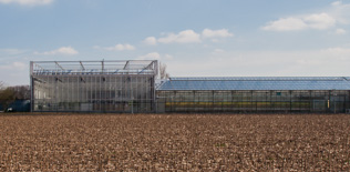 CROPDESIGN sa<br><br>extension complexe de serres greenhouse 2